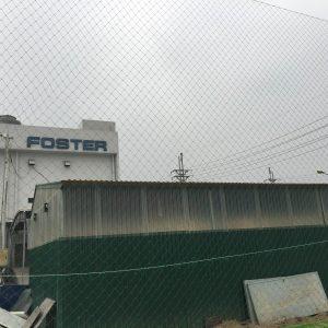 Lưới chắn bóng khu công nghiệp Vship
